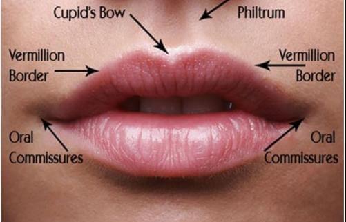 Lip Treatments | Lip Injections | Lip Augmentation ...