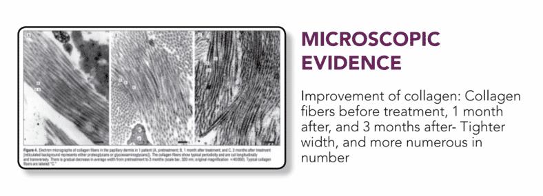 Microscopic 1